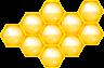 cyberscooty-ruche-300px